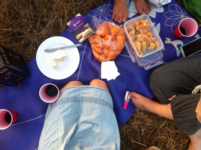 Picnic on a radish plot